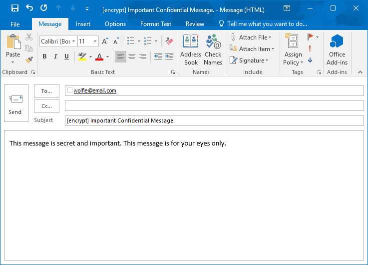 Screenshot of a New Email message in Outlook