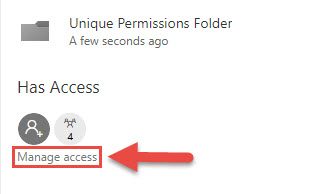 Screenshot of the Details Menu with a red box around the Manage access option and a red arrow pointing towards the Manage access option.