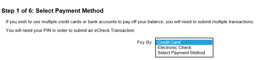 make a payment screen in MyNEVADA, step 1 to select payment method