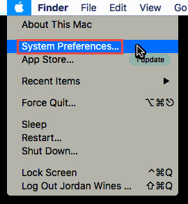 Screenshot of the Apple menu with a red box around the System Preferences... option.